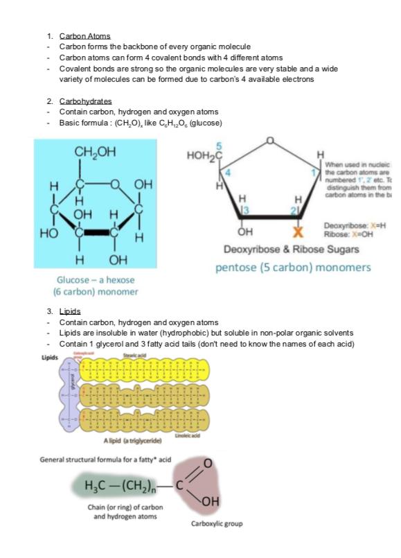 2.1 Molecules to Metabolism